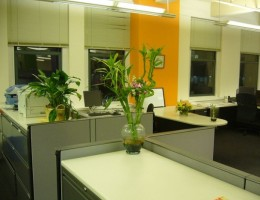 Can-Feng-Shui-Help-to-Increase-Profits-in-the-Modern-Office