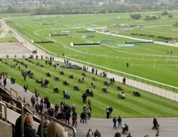 The-Jockey-Club-names-Cheltenham-Racecourse-Developer