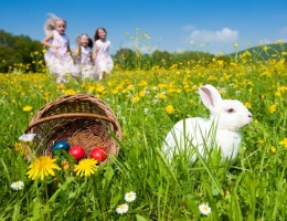 Easter-Eggs-at-centre-of-Supermarket-Price-War