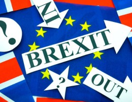 Business owners not swayed by politicians views on brexit
